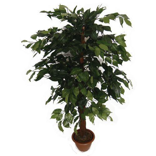 Fíkus, umělá rostlina, 110 cm
