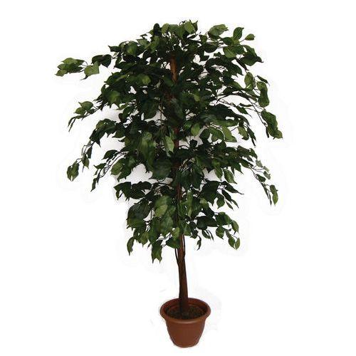 Fíkus, umělá rostlina, 140 cm