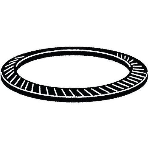 Pojistná podložka typ S Pružinová ocel M30